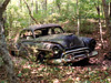 I happened upon this long-abandoned 1950 Oldsmobile 88 quite by accident in a wooded spot near Athens. The car is slowly returning to the earth.