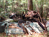 This pile of doors and bumpers salvaged from ancient cars appears next to the abandoned 1950 Oldsmobile.